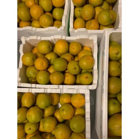 cam ngọt: thùng 15 kg